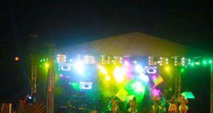 Carnival_2014_img024
