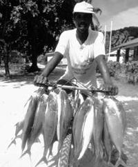 0fishing