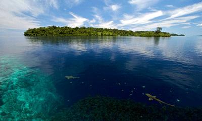 Many-Solomon-Islands-are-lo