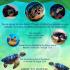 Sea Turtle Festival Seychelles Poster 2016_final